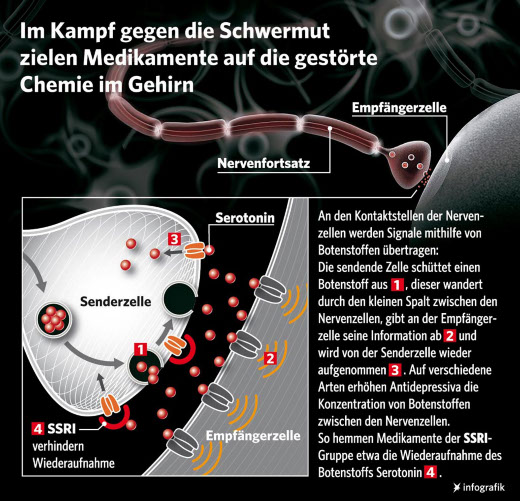 Serotonin Infografik